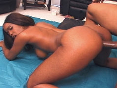 Hypnotiq, a pretty black maid with amazing tits...
