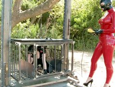 Rubber Playground 1 - Scene 5