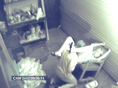 Security Cam Chronicles 3 - Scene 1