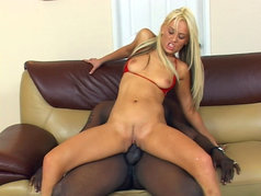 Bros And Blondes 3 - Scene 1
