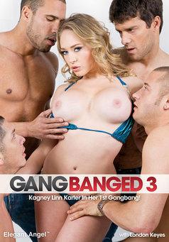 Gangbanged #3