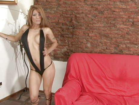 Busty Trannies Exposed 1 - Scene 1