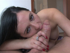 Angell Summers Swallows