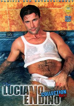 The Luciano Endino Collection #1