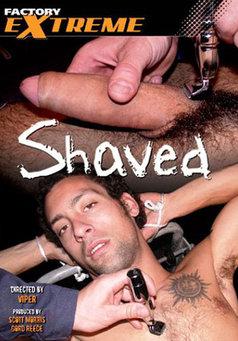 Shaved #1